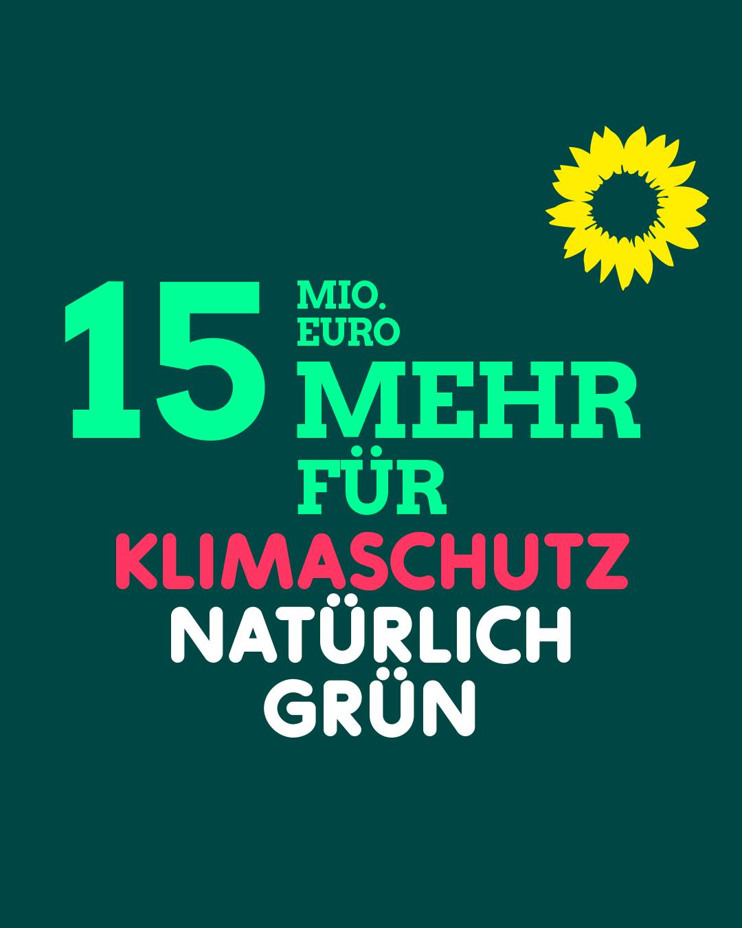 3_GRUENE-HD_Klimaschutzkampagne-2021_S-M_Klimaschutzhaushalt-03_21_05_rz