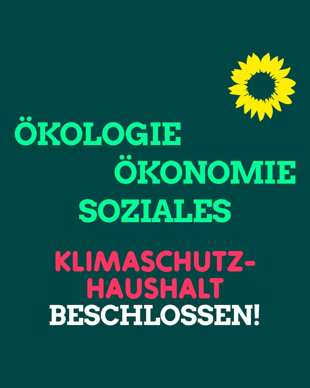 GRUENE-HD_Klimaschutzkampagne-2021_S-M_Klimaschutzhaushalt-03_21_06_rz